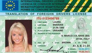 ... международные водительские права