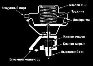Система рециркуляции отработавших газов